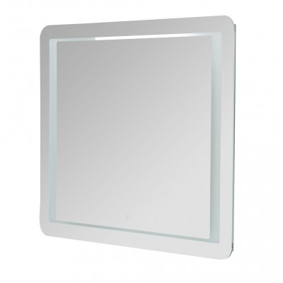 Miroir LED - Perroquet
